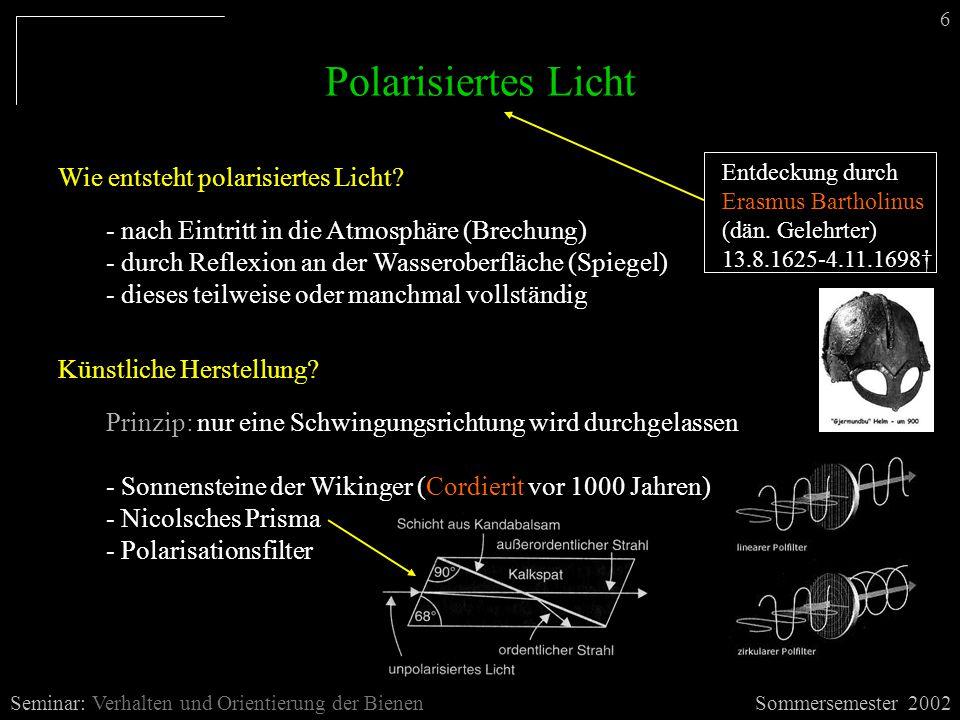 Polarisiertes Licht Wie entsteht polarisiertes Licht