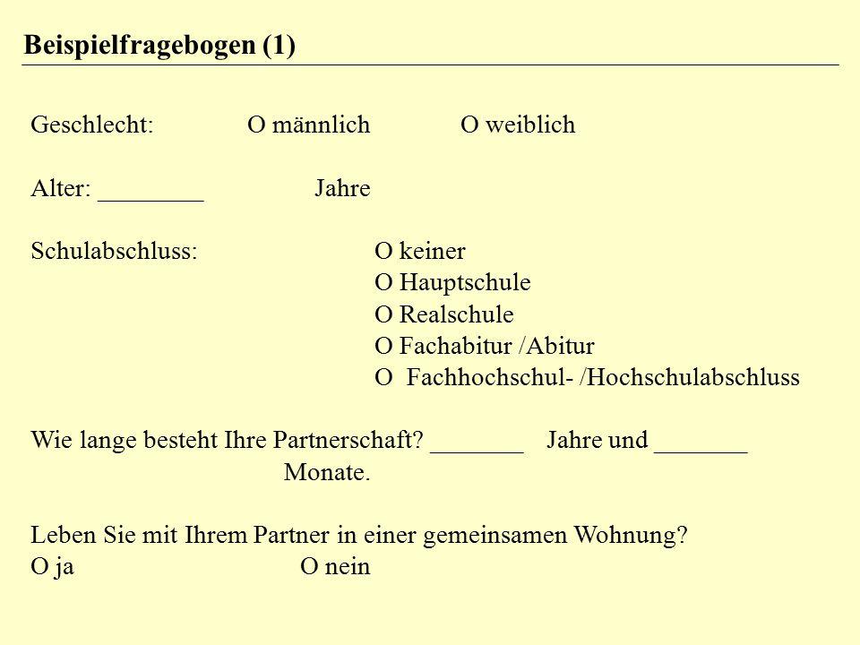 Beispielfragebogen (1)