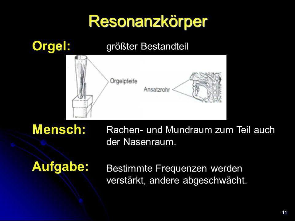 Resonanzkörper Orgel: Mensch: Aufgabe: größter Bestandteil