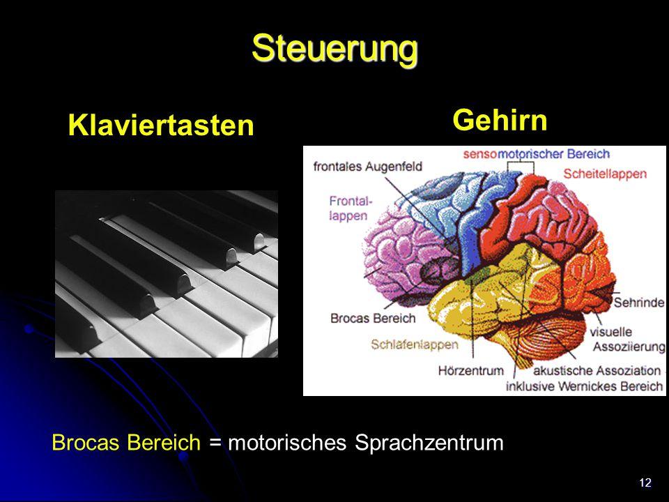 Steuerung Gehirn Klaviertasten