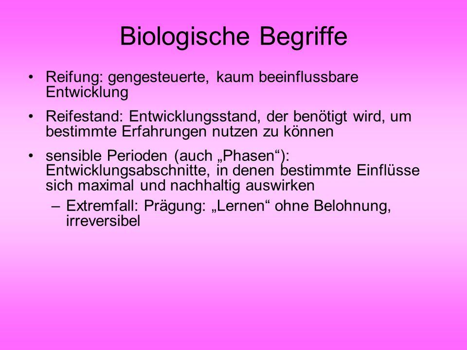 Biologische Begriffe Reifung: gengesteuerte, kaum beeinflussbare Entwicklung.