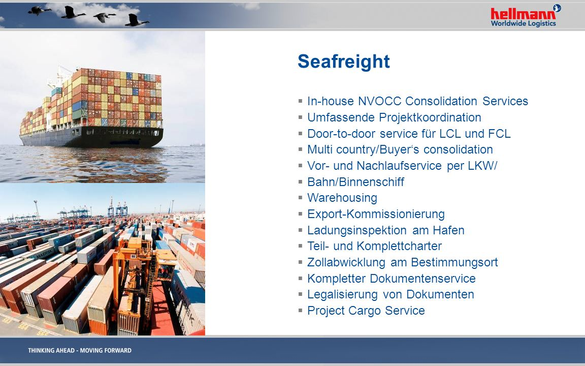 Seafreight In-house NVOCC Consolidation Services