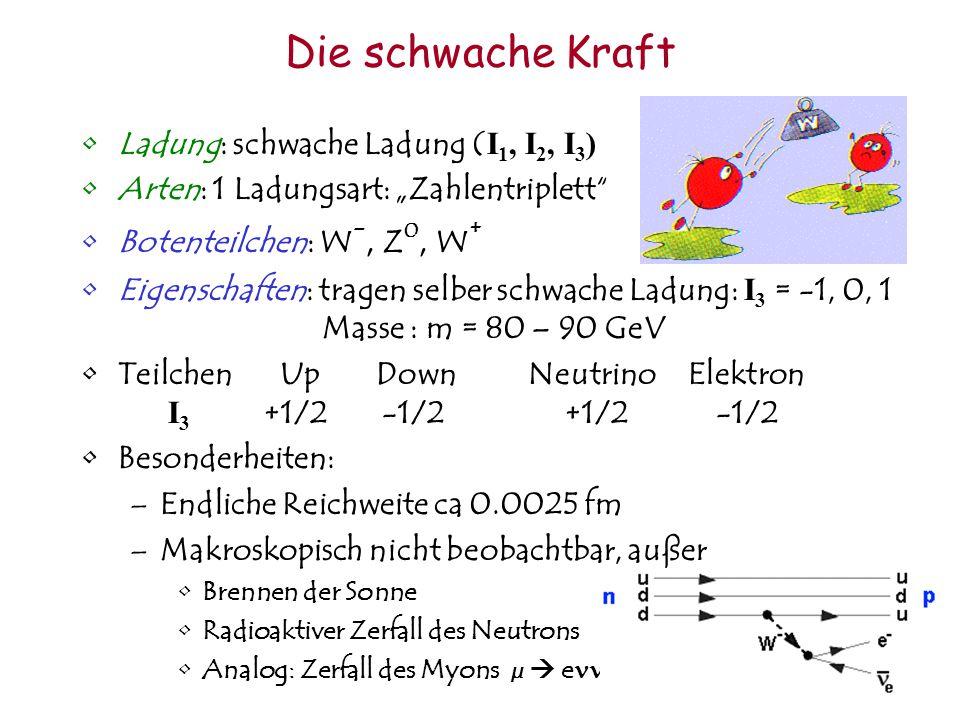 Die schwache Kraft Ladung: schwache Ladung (I1, I2, I3)
