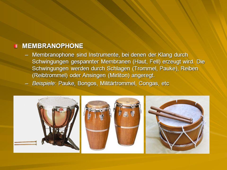 MEMBRANOPHONE