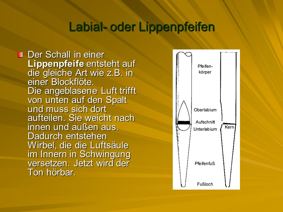 Labial- oder Lippenpfeifen