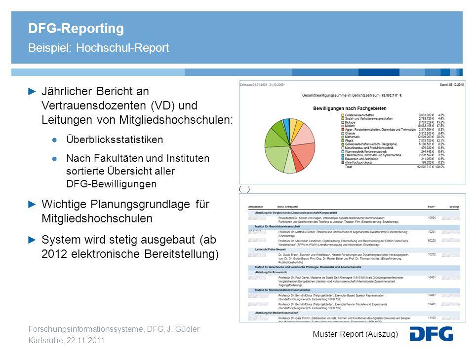 DFG-Reporting Beispiel: Hochschul-Report