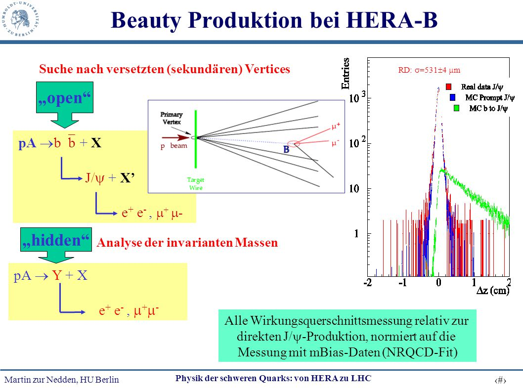 Beauty Produktion bei HERA-B