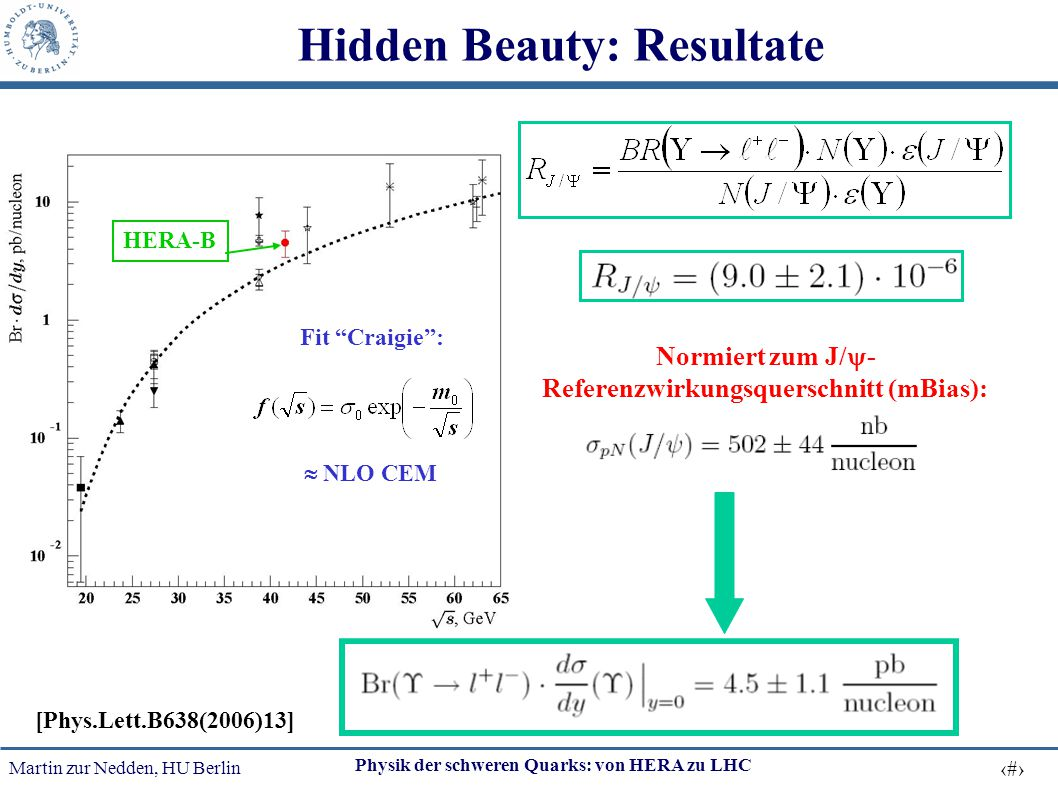 Hidden Beauty: Resultate