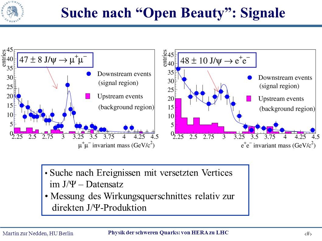 Suche nach Open Beauty : Signale