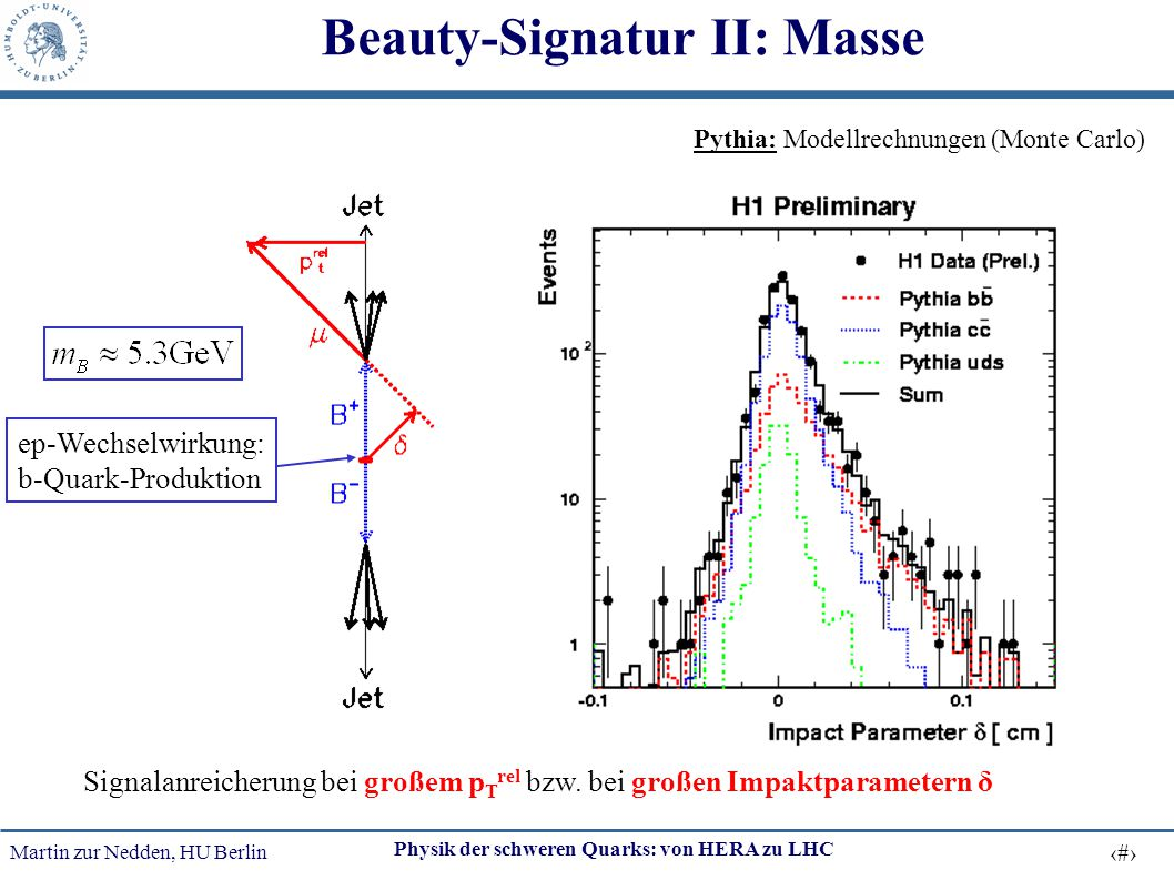 Beauty-Signatur II: Masse