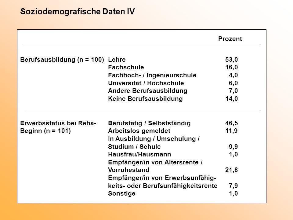 Soziodemografische Daten IV