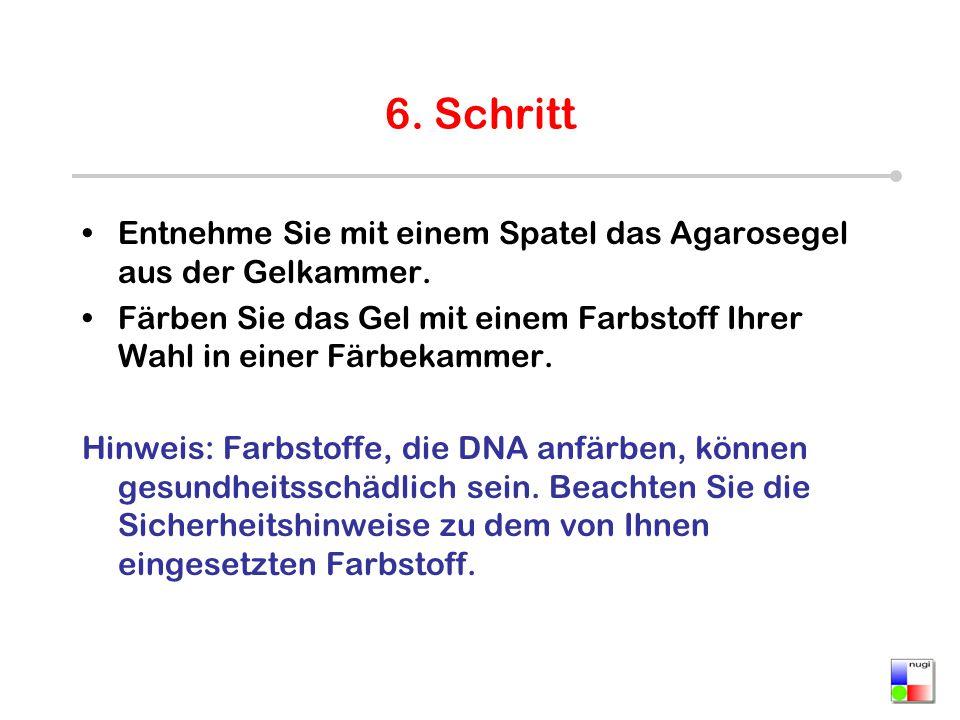 Beste Dna Die Doppelhelix Färbung Arbeitsblatt Bilder ...