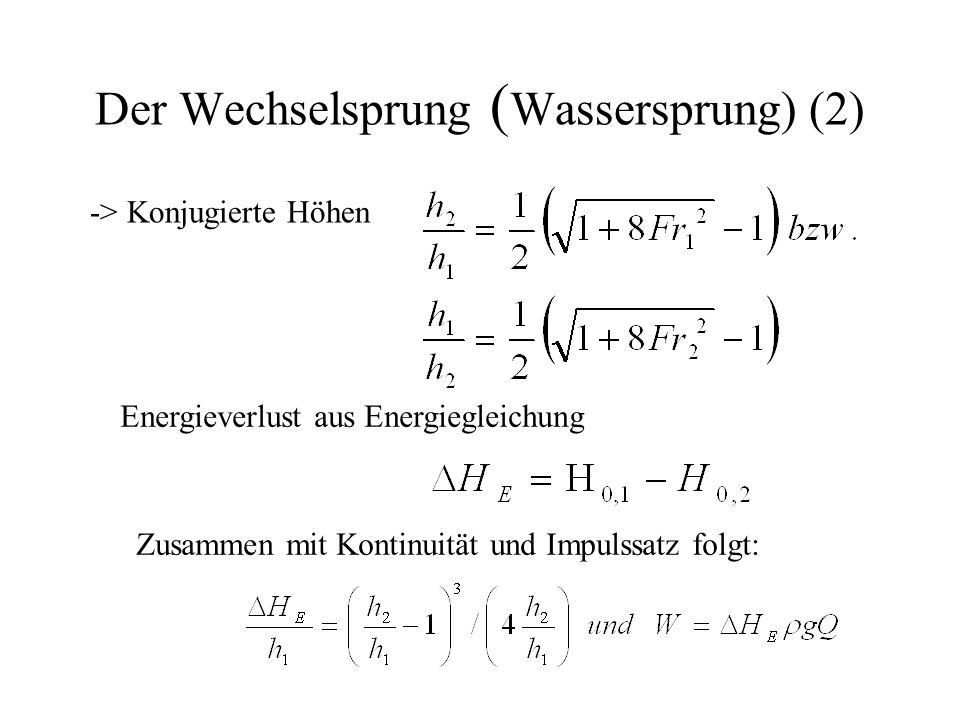 Der Wechselsprung (Wassersprung) (2)