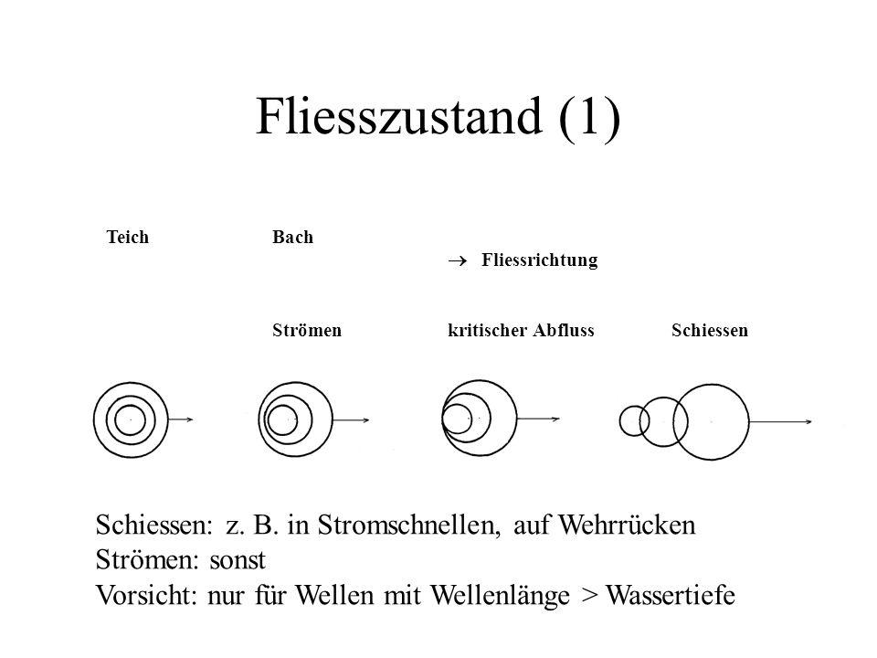 Fliesszustand (1) Schiessen: z. B. in Stromschnellen, auf Wehrrücken