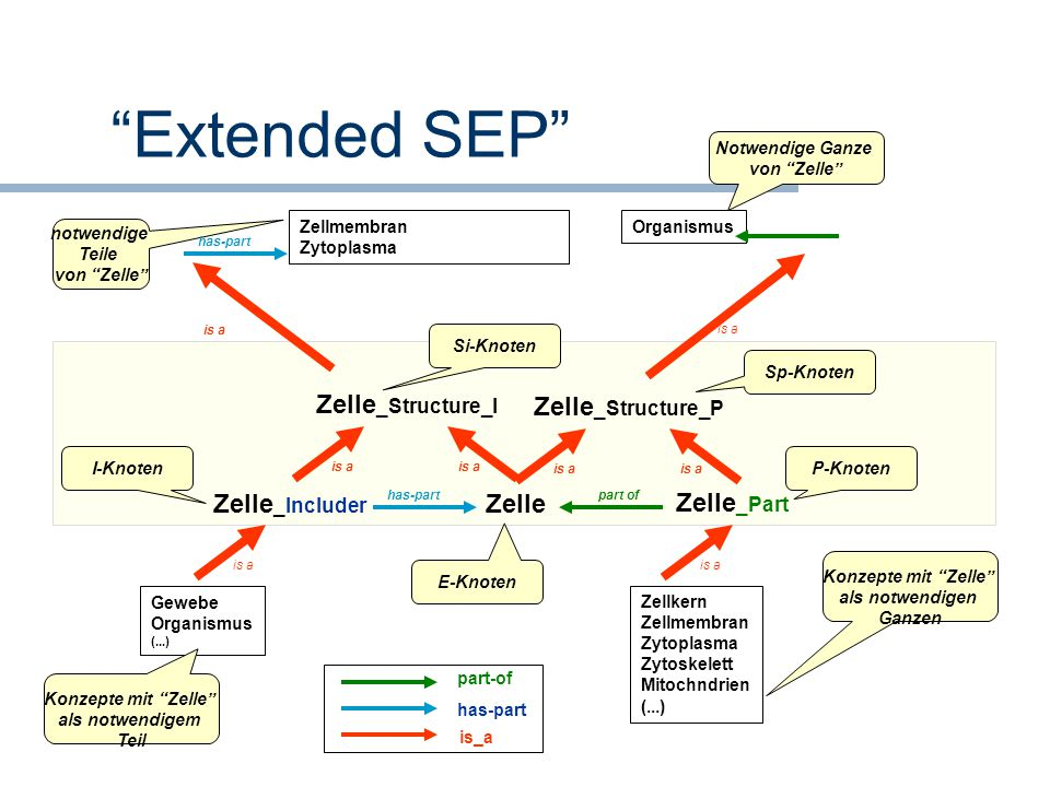 Extended SEP Zelle_Structure_I Zelle_Structure_P Zelle_Includer