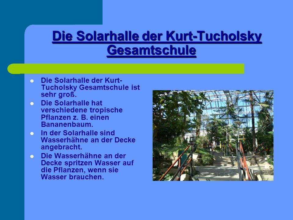 Die Solarhalle der Kurt-Tucholsky Gesamtschule