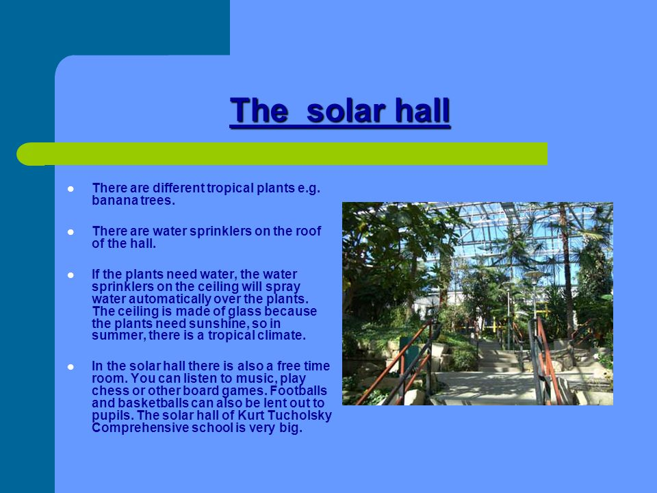 The solar hall There are different tropical plants e.g. banana trees.