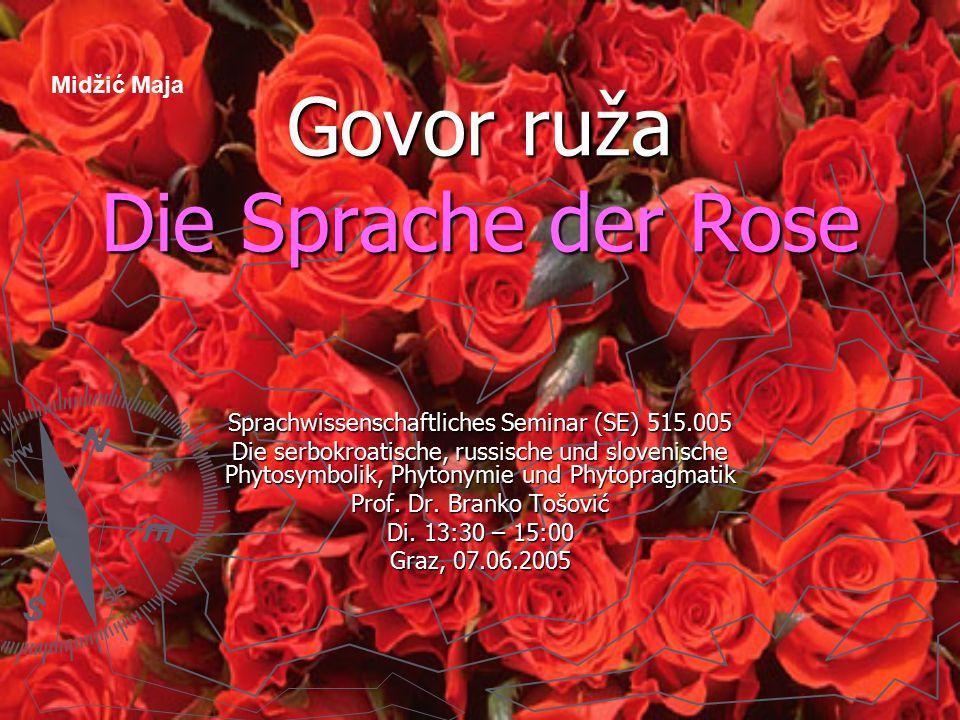 Govor ruža Die Sprache der Rose