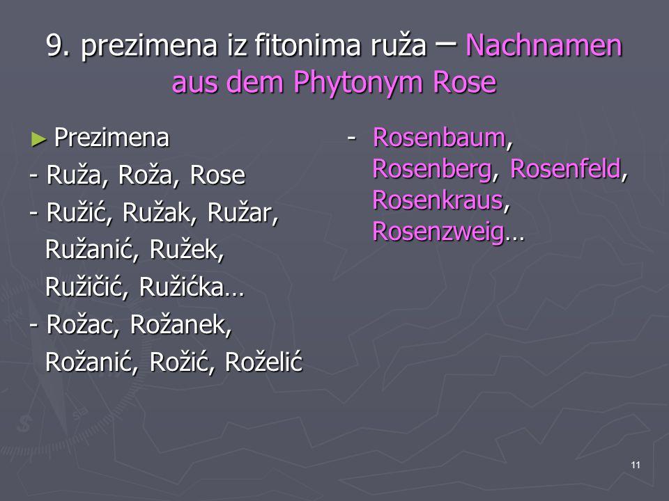 9. prezimena iz fitonima ruža – Nachnamen aus dem Phytonym Rose