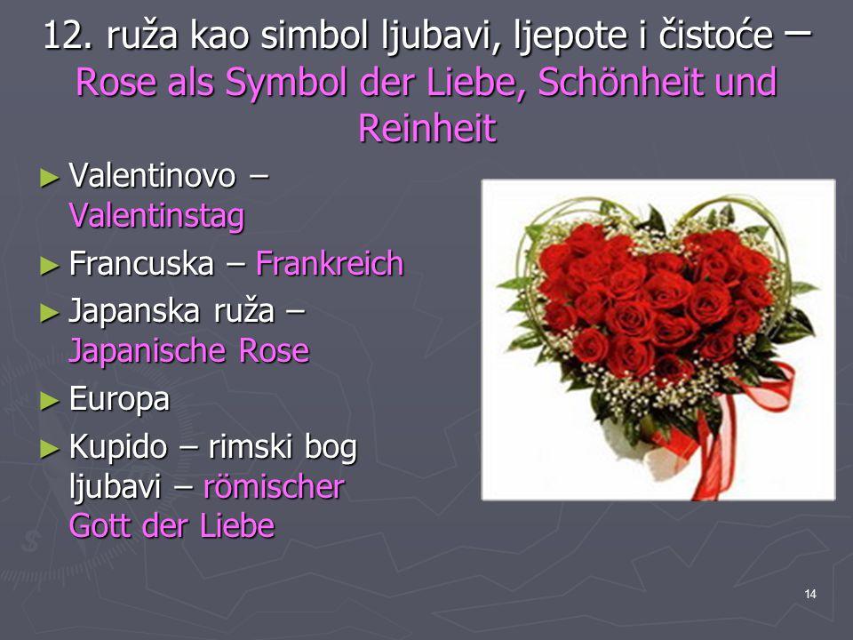 12. ruža kao simbol ljubavi, ljepote i čistoće –Rose als Symbol der Liebe, Schönheit und Reinheit