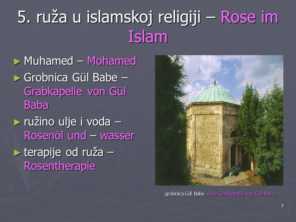 5. ruža u islamskoj religiji – Rose im Islam
