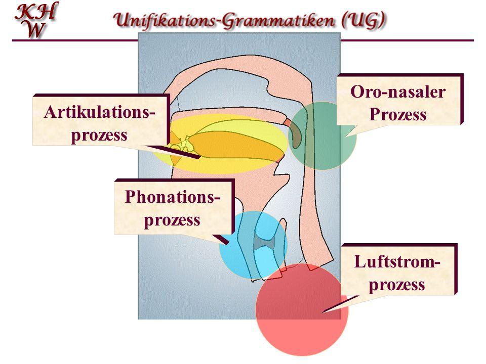 Oro-nasaler Prozess Artikulations- prozess Phonations- prozess Luftstrom- prozess
