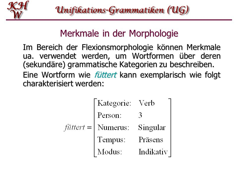 Merkmale in der Morphologie
