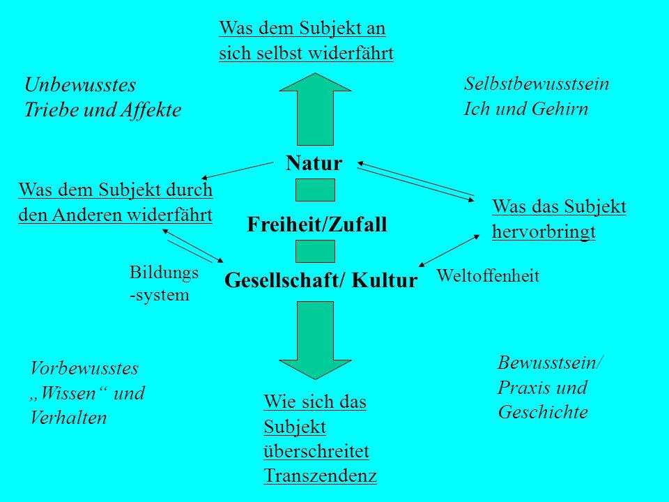 Natur Freiheit/Zufall Gesellschaft/ Kultur