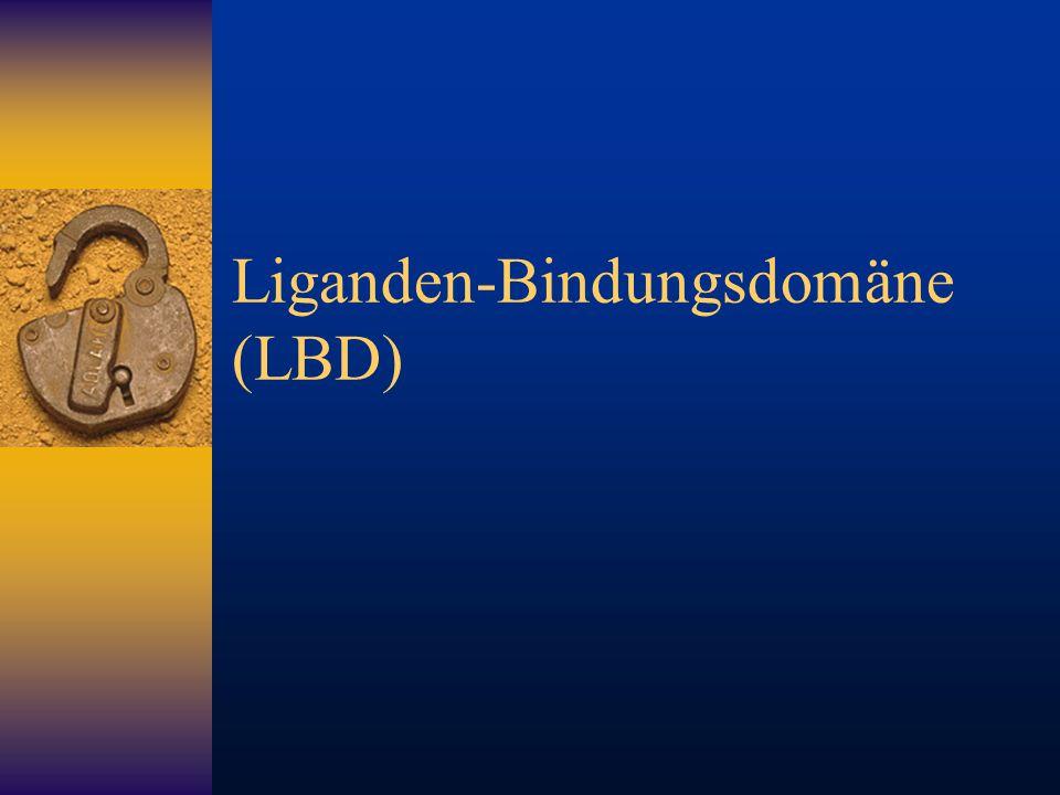 Liganden-Bindungsdomäne (LBD)