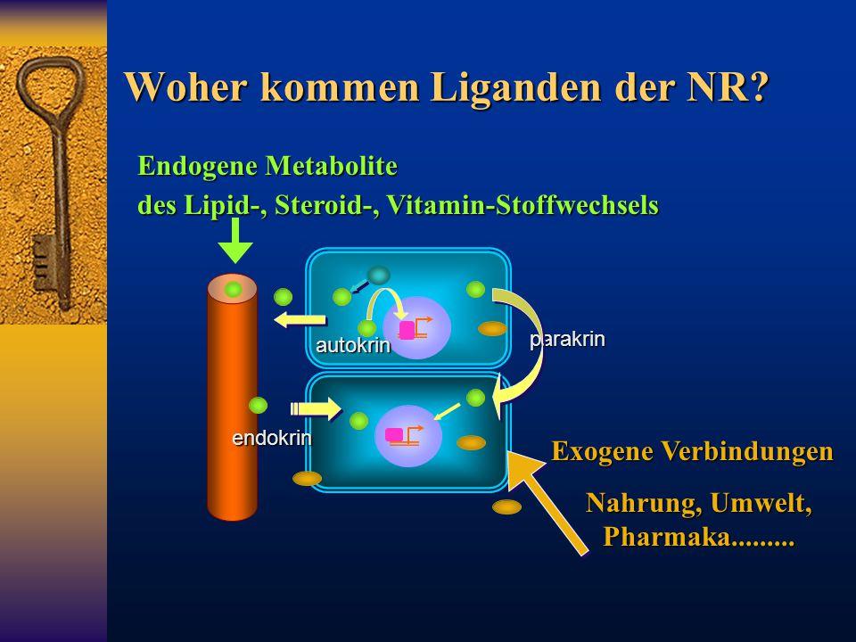 Woher kommen Liganden der NR