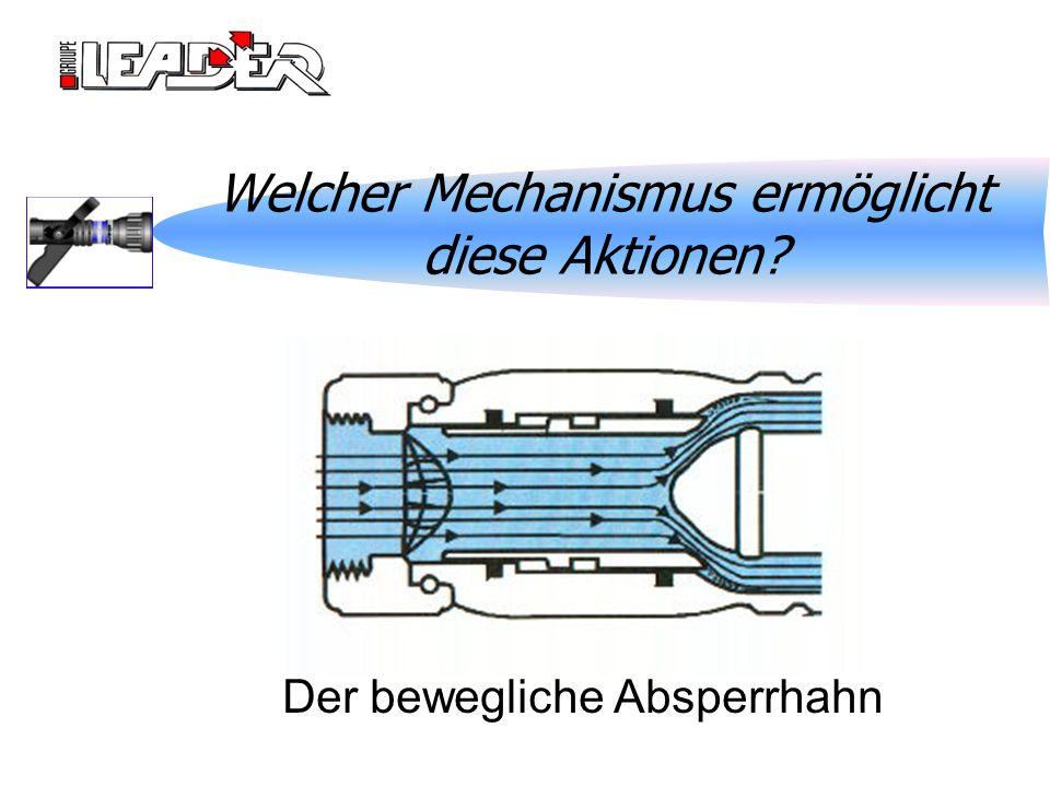 Welcher Mechanismus ermöglicht diese Aktionen