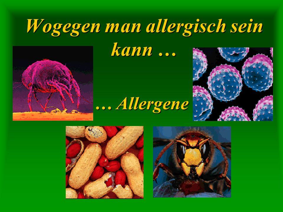 Wogegen man allergisch sein kann …