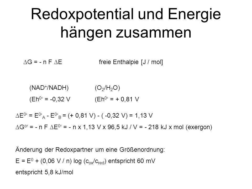Redoxpotential und Energie hängen zusammen