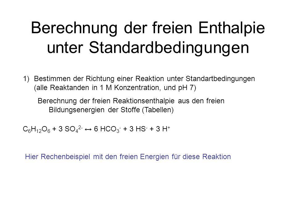 Berechnung der freien Enthalpie unter Standardbedingungen