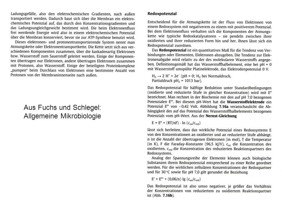 Aus Fuchs und Schlegel: Allgemeine Mikrobiologie