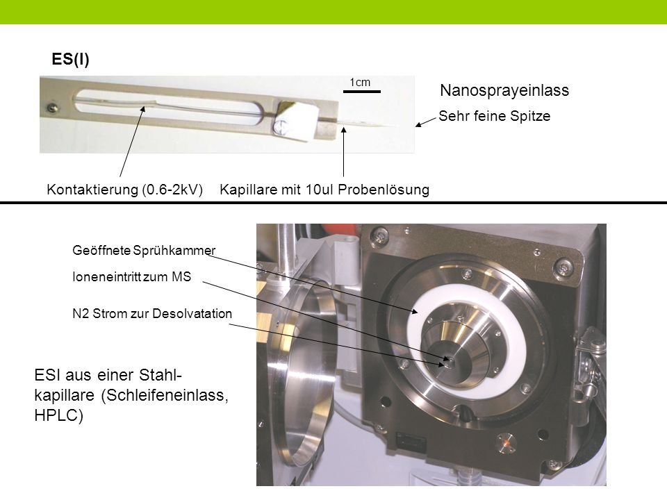 Kontaktierung (0.6-2kV) Kapillare mit 10ul Probenlösung