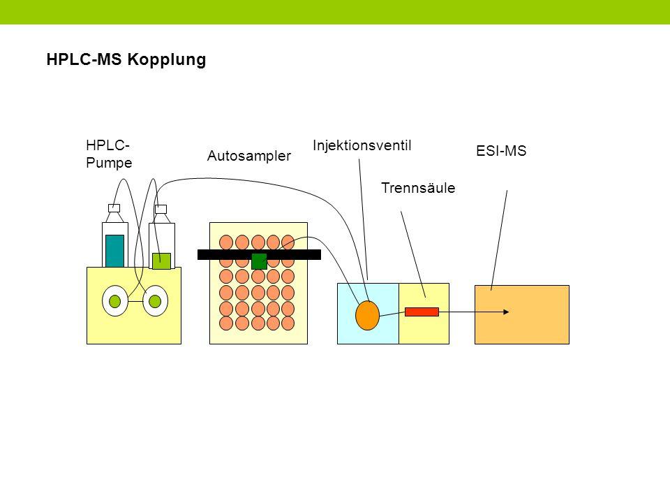 HPLC-MS Kopplung HPLC-Pumpe Injektionsventil ESI-MS Autosampler