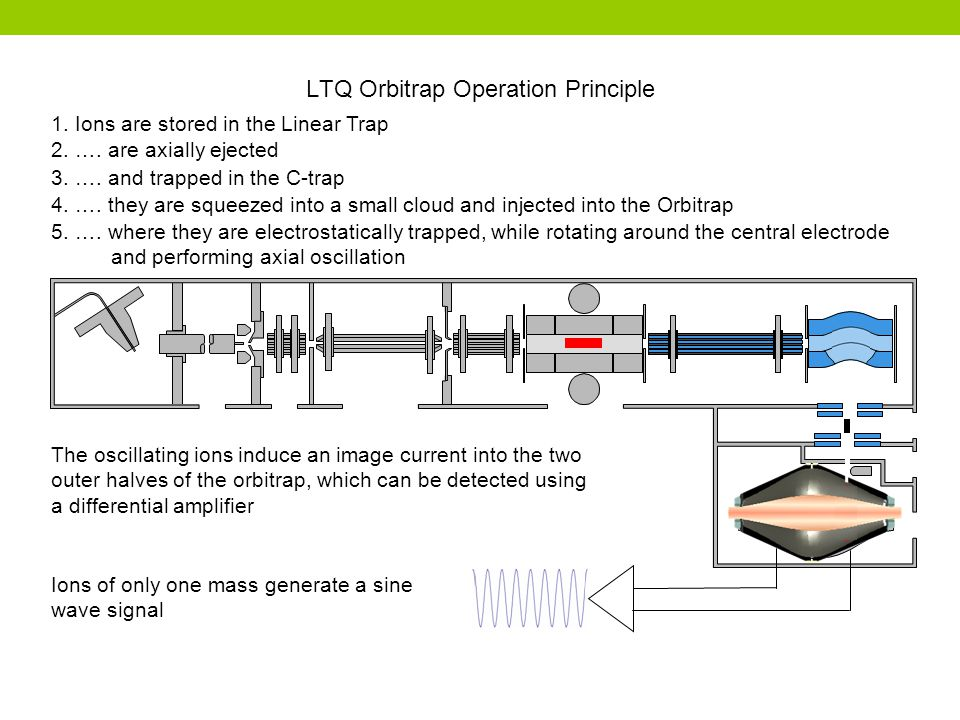 LTQ Orbitrap Operation Principle