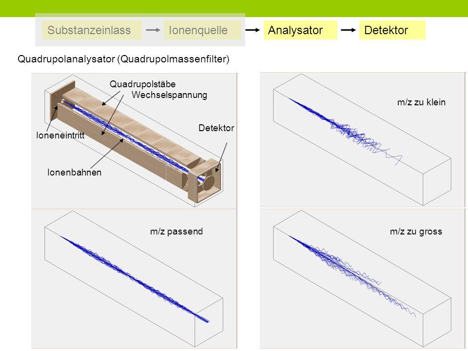 Substanzeinlass Ionenquelle Analysator Detektor