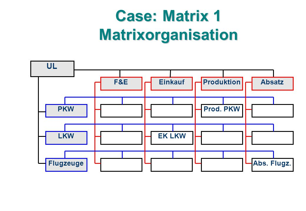 Case: Matrix 1 Matrixorganisation