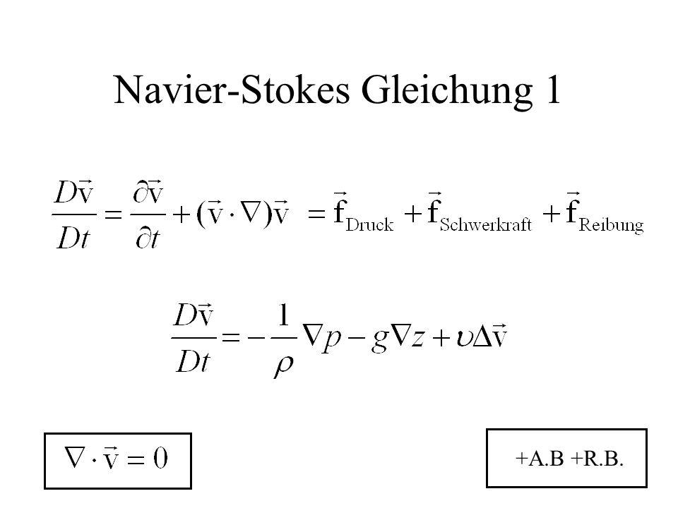Navier-Stokes Gleichung 1