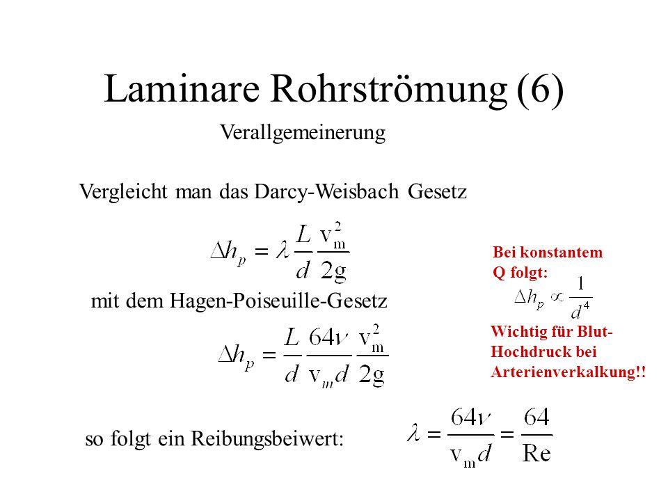 Laminare Rohrströmung (6)