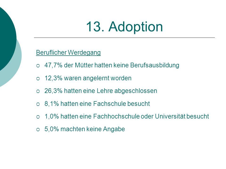 13. Adoption Beruflicher Werdegang