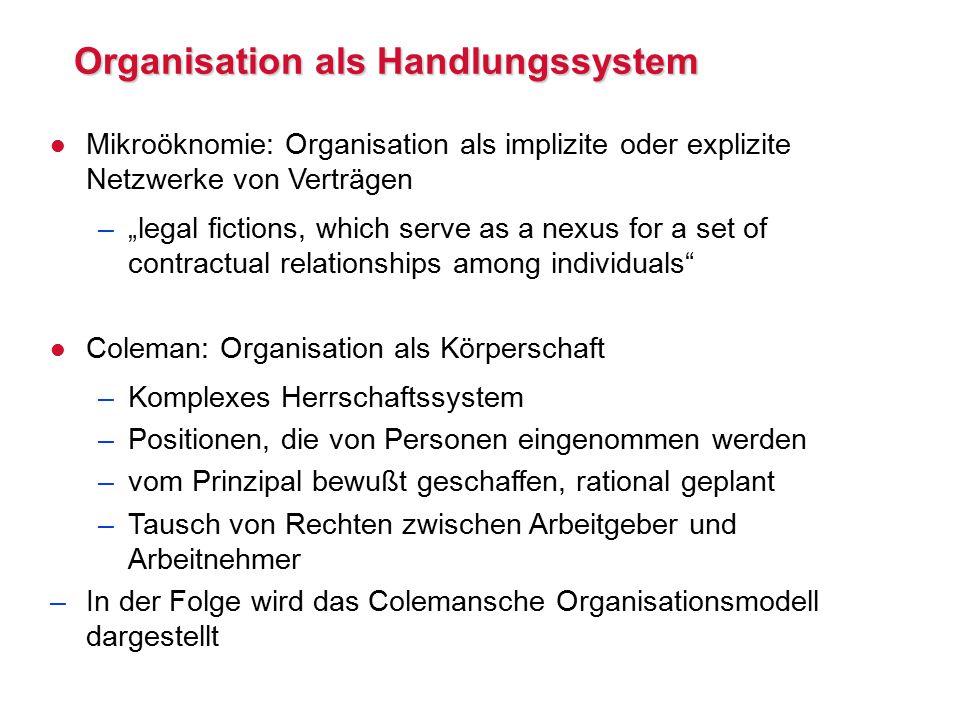 Organisation als Handlungssystem