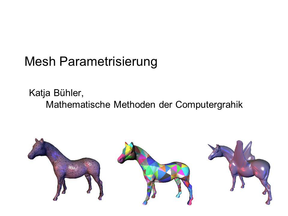 Mesh Parametrisierung
