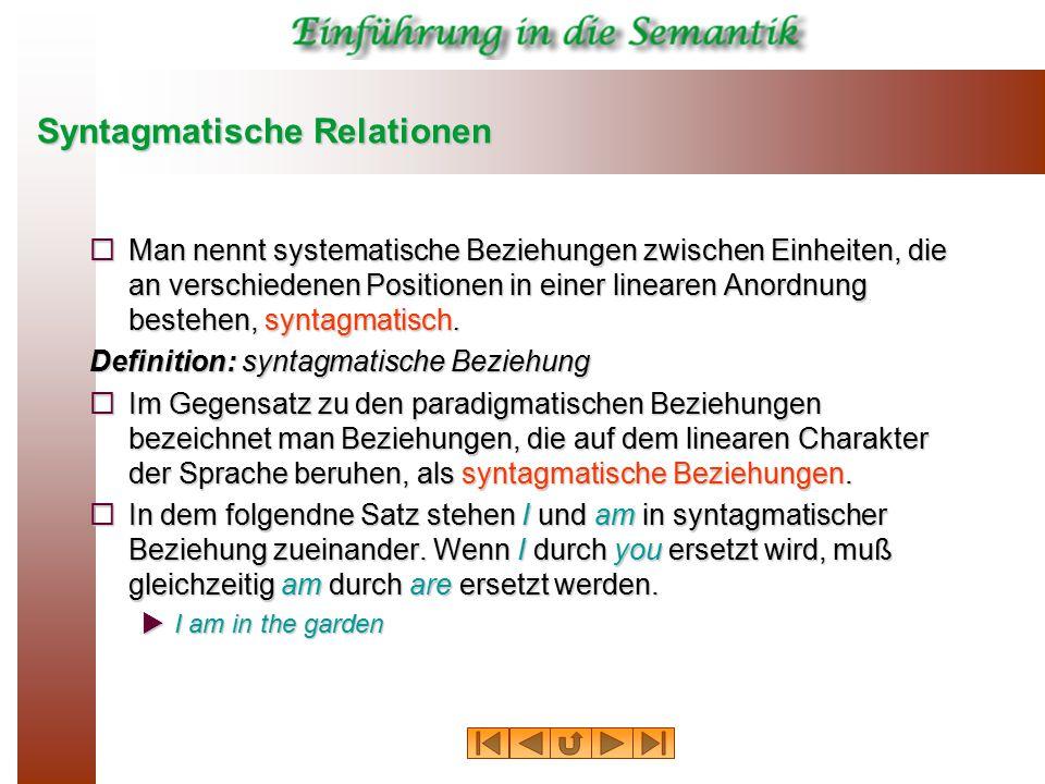 Syntagmatische Relationen