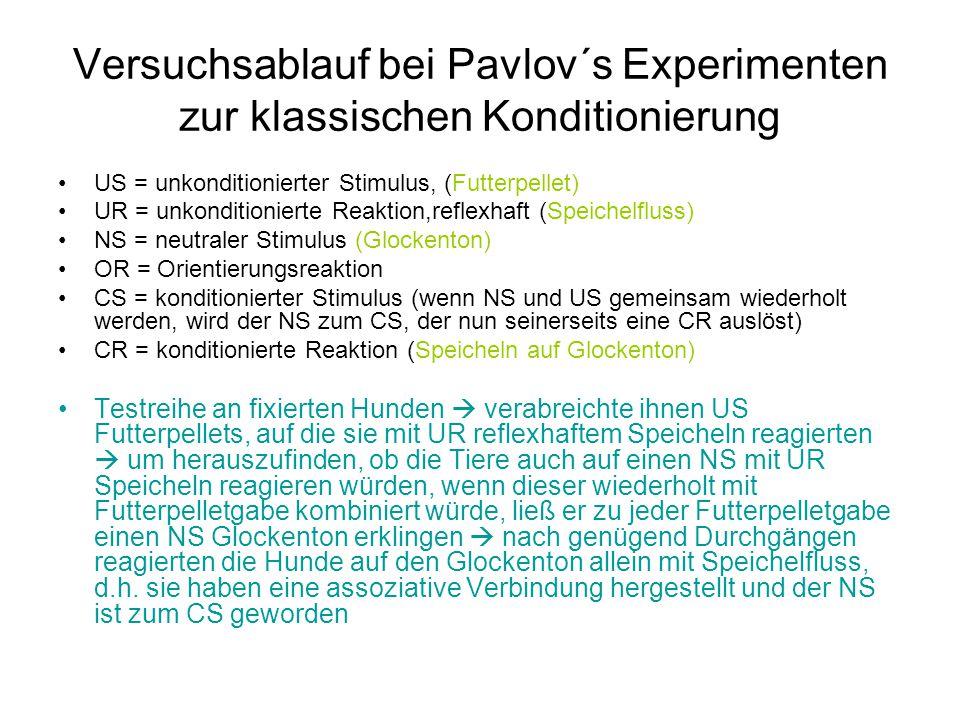Versuchsablauf bei Pavlov´s Experimenten zur klassischen Konditionierung
