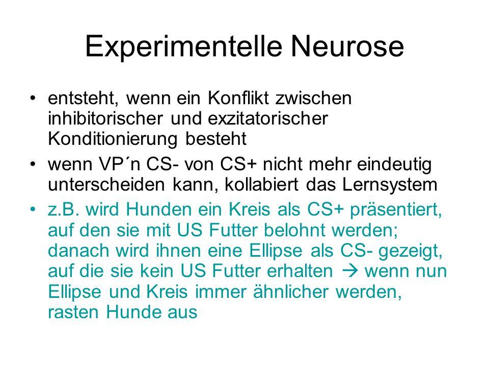 Experimentelle Neurose