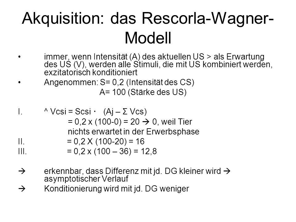 Akquisition: das Rescorla-Wagner-Modell