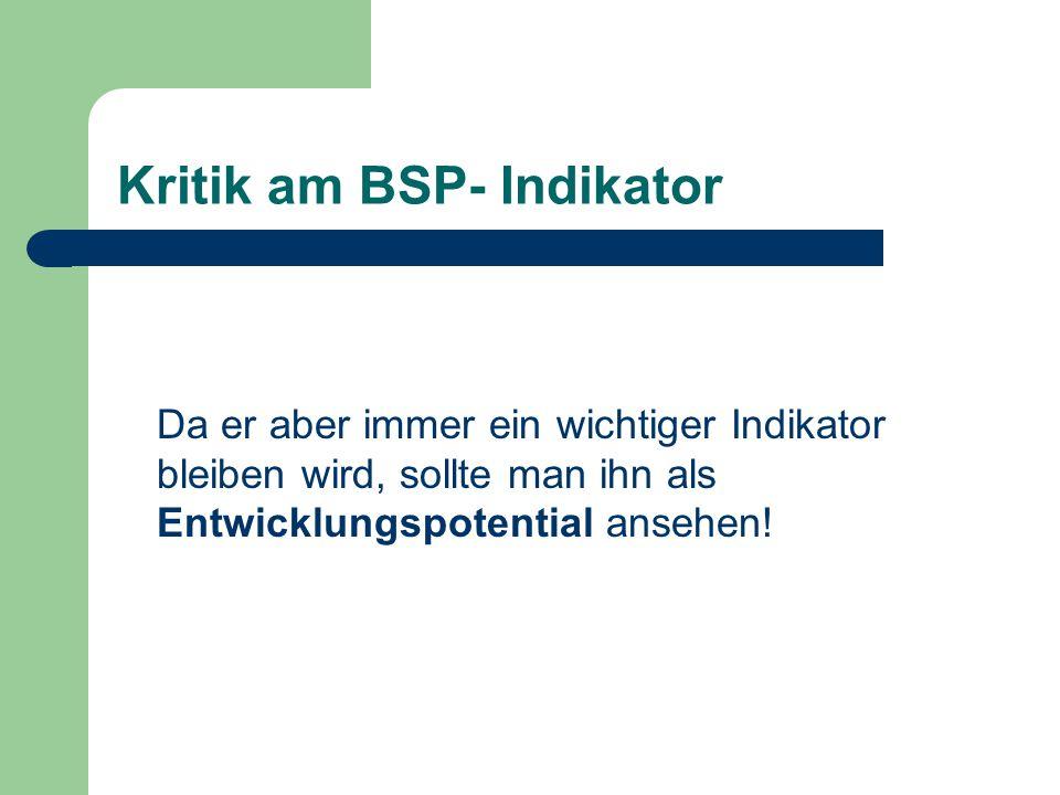 Kritik am BSP- Indikator